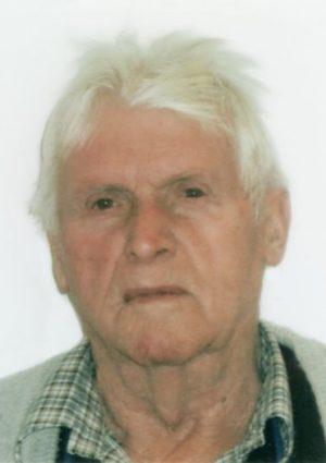 Portrait von Georg Wieser, Wangen